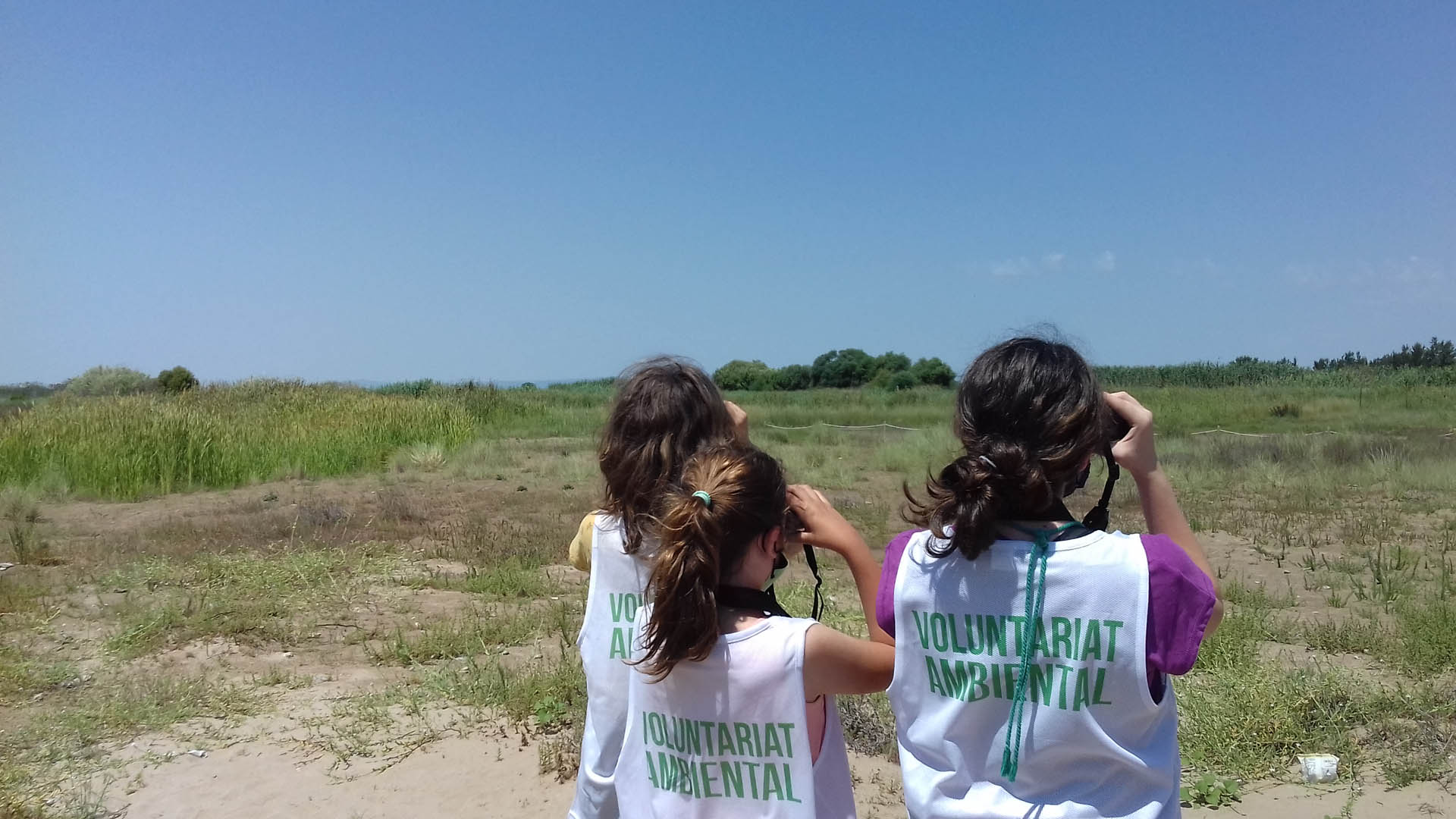 Voluntariado Rafalell i Vistabella